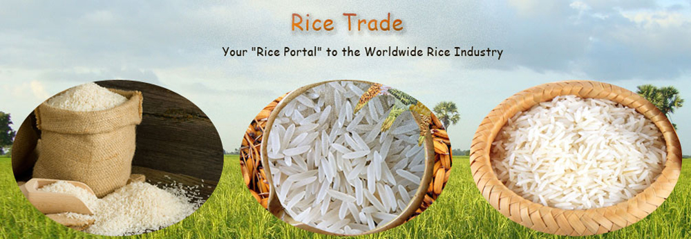 non basmati rice exports from india, basmati rice manufacturers in india, rice pouch manufactures in india, rice mill machinery